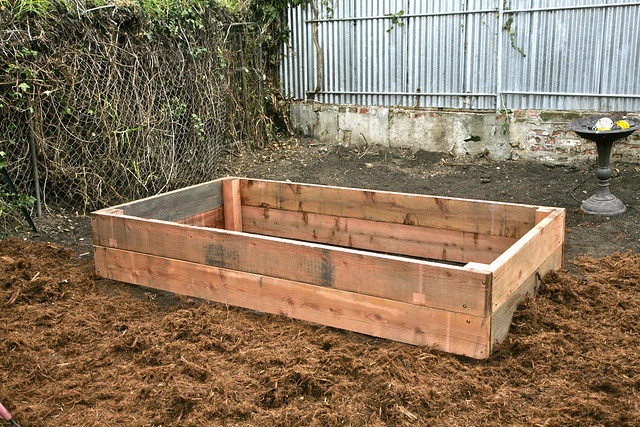 Back raised bed.