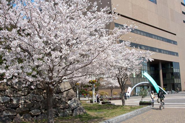 2012-kyushu-115