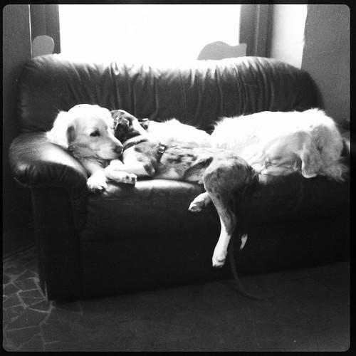 Sofa sleep