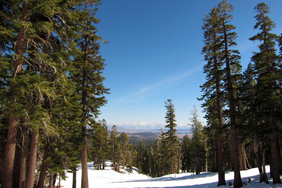 022512_skiing13