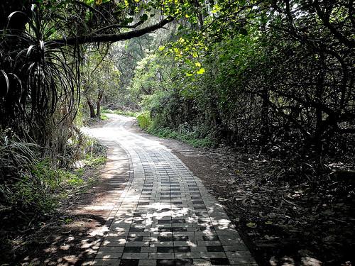 Taoyuan Bike Trail