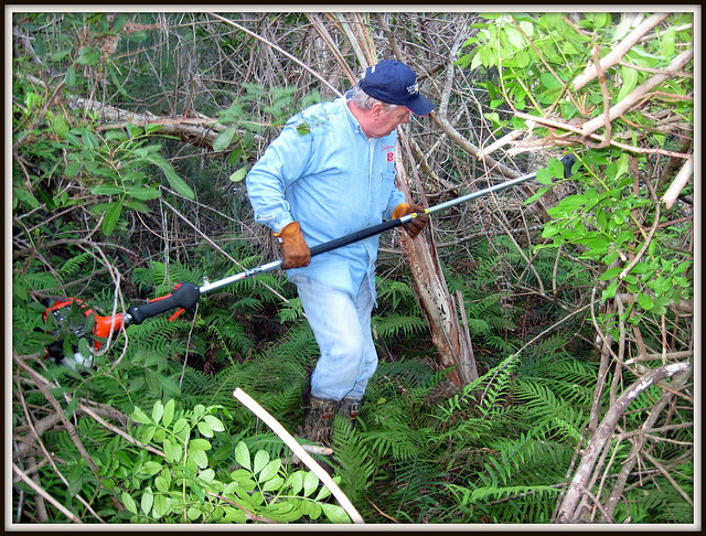 Al clearing a path to the eagle nest