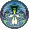 Orchidacious на CFC-CA