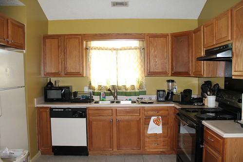 Kitchen (minus the bar)