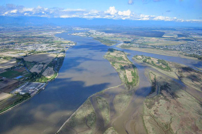 Fraser River Estuary, Greater Vancouver, British Columbia, Canada