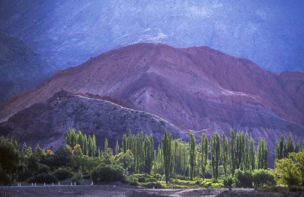 Landscape - Andes - Argentina