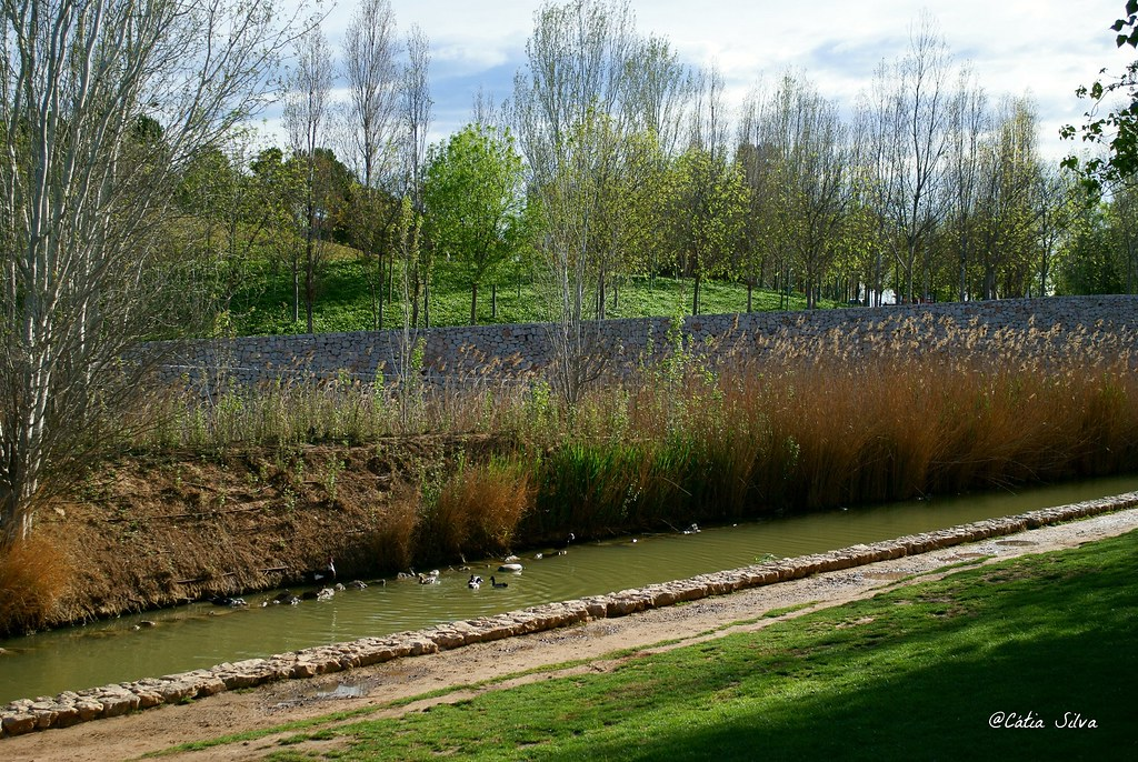 Valencia_Primavera_ Jardines del Turia (2)