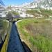 Alaska Train by Camera Eye Photography