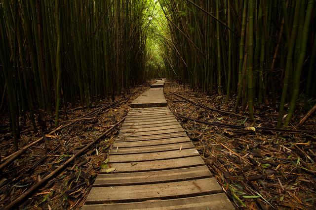Pipiwai Trail, Haleakala