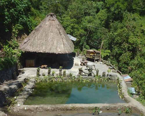 Luzon-Banaue (31)