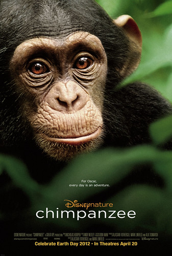 CHIMPANZEE%20one%20sheet
