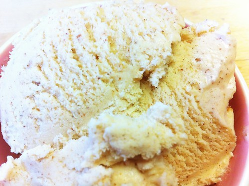 Cinnamon ice cream close-up