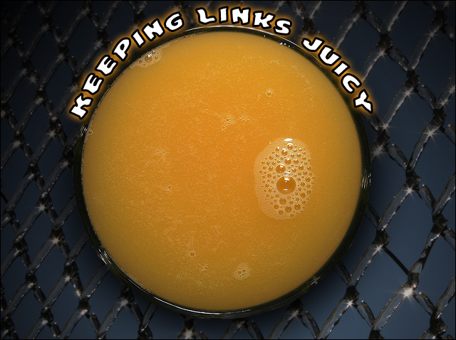 Keep SEO Link Juice