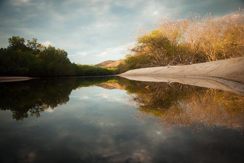 morning reflection water guanacaste