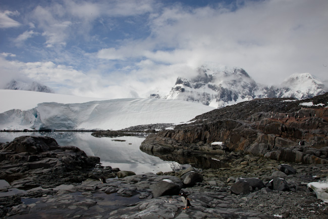 antarctica-blog-82