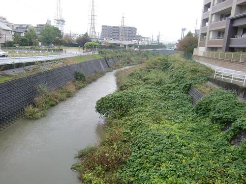 名前の分からない川