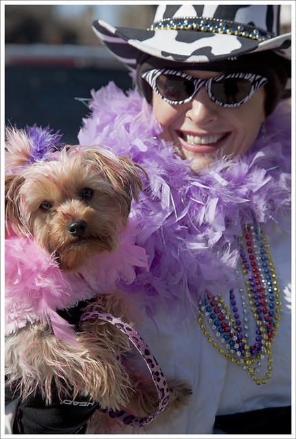 Soulard Dog Parade 2012-02-12 1