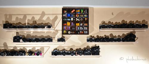 films & cameras by phollectormo
