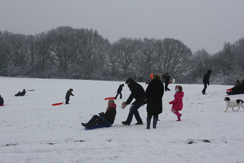 Sledging in Shrewsbury Park