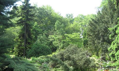 Zagreb Botanical Garden 1 by Anna Amnell