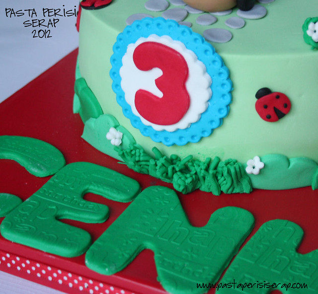 SMURFS CAKE- CENKBIRTHDAY CAKE