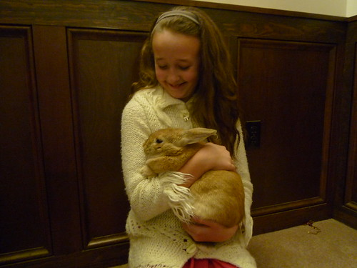Jenya's New Bunny