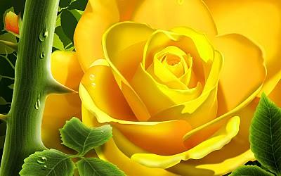 ros kuning
