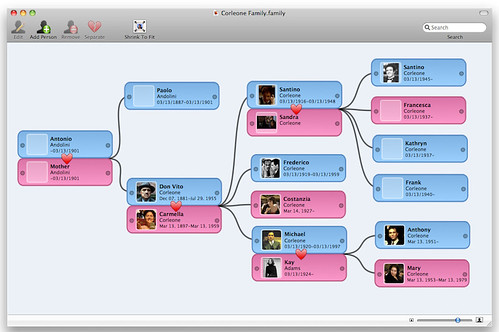 Family Screenshot - Typical Layout