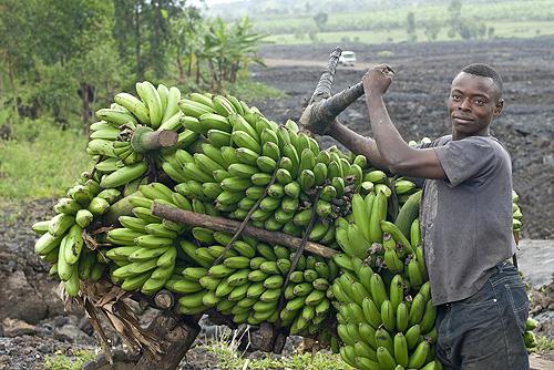 African man w/ bananas