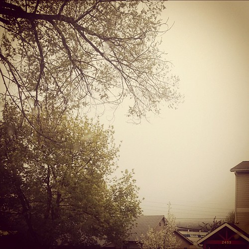 May 2nd: skyline is hidden by the SNOW and clouds. There are mountains...somewhere. #photoadaymay