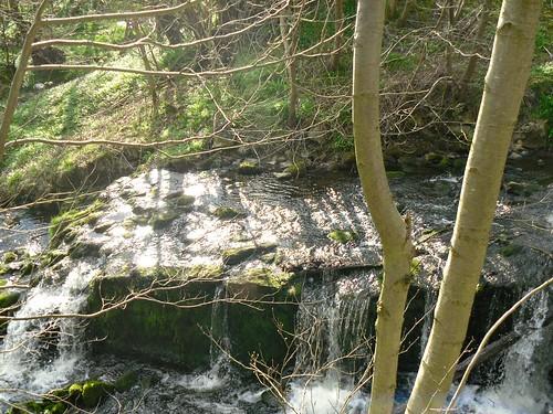 park mill stream