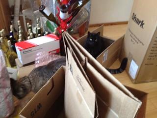 Good Boxes