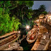 Pair-a-Docks - Jungle Cruise, Disneyland by Gregg L Cooper