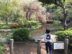 とらちゃんと有栖川宮記念公園(港区)