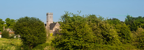 travel school trees ireland tree tower church nature st landscape nicholas limerick adare