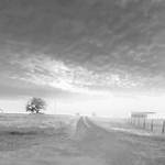 Texas Wildflower Workshp_2016_Roads