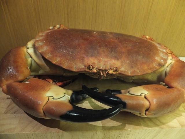 i won a crab
