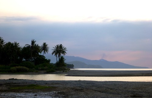 ocean sunset tree beach dusk palm east timor leste