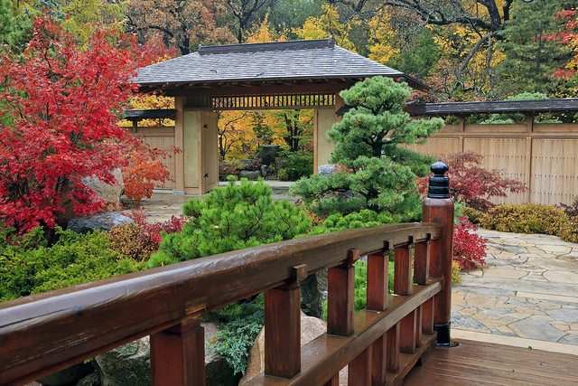 Anderson Japanese Gardens in the Fall