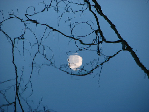Moon Reflection by paynehollow