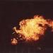 bonfire by rbvanheesch