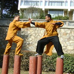 SHAOLIN INDIA SHIFU KANISHKA AND SHAOLIN TEMPLE SHIFU SHI YANFANG TRAINING IN LIAN SHOU DUANDA ON MEHIUA POLES IN SHAOLIN TEMPLE WUSHU GUAN Shaolin Kung Fu India