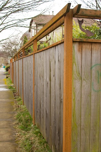 cool fence  1357