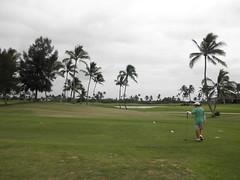 Hawaii Prince Golf Club 253