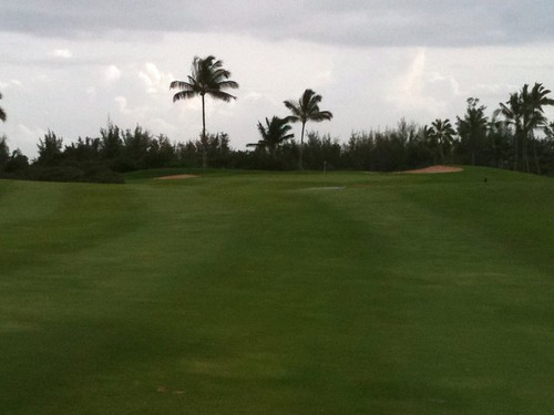 Hawaii Prince Golf Club 459