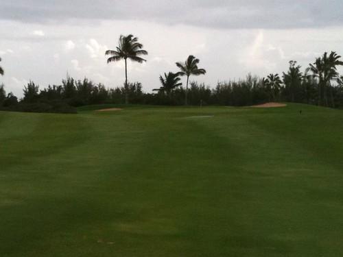 Hawaii Prince Golf Club 459