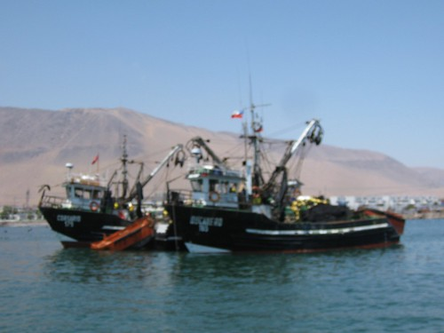 Iquique tug boats
