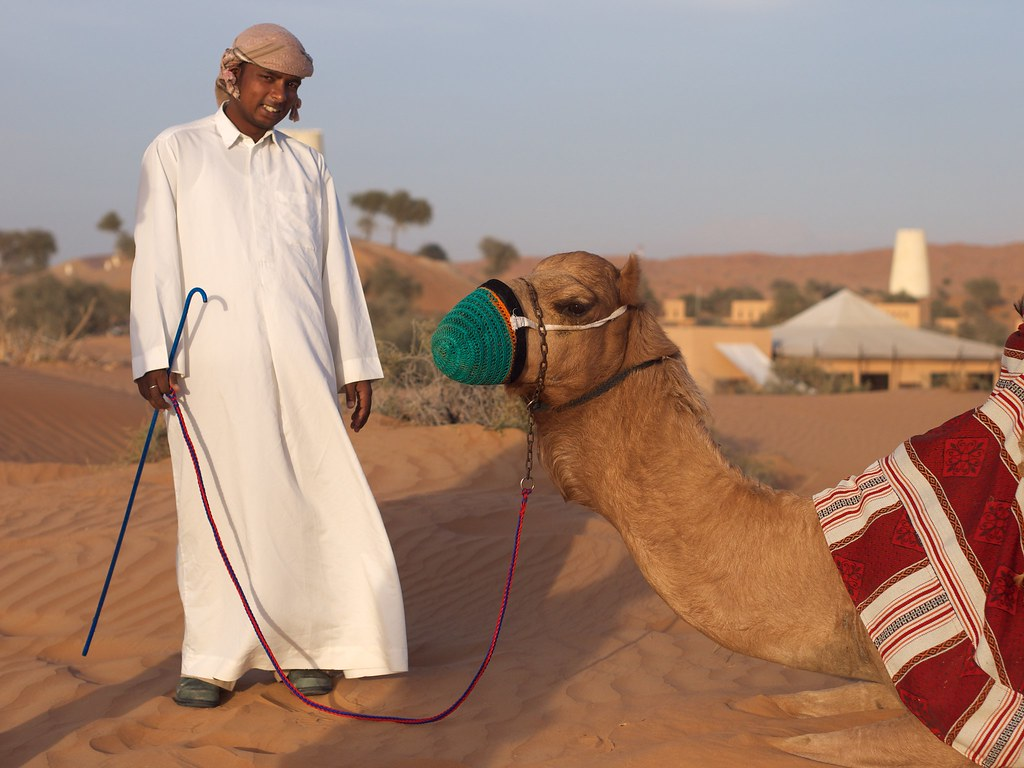 Our camel-driver