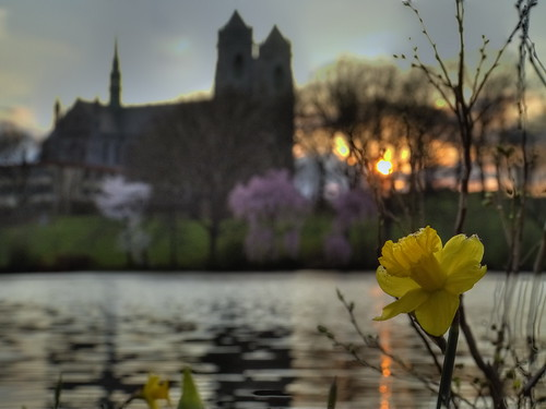 church cherry worship cathedral blossoms nj christian newark powerpoint hdr ppt 4x3