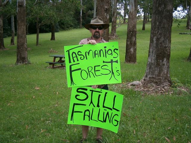 Mount Tambourine, Queensland 1
